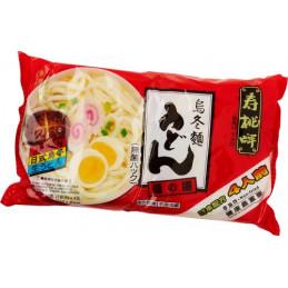 Noodle Udon Japanese Style...