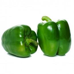 Paprika Grön